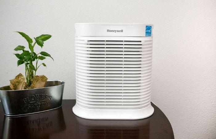 увлажнитель воздуха при аллергии