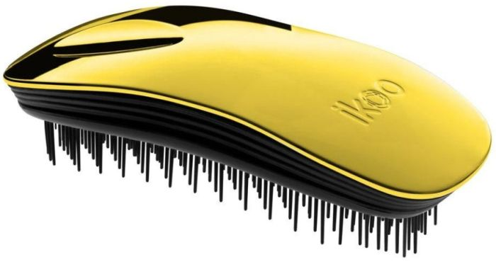 Ikoo Home Brush