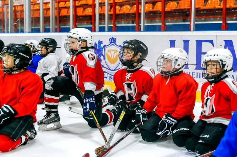 хоккей как зимний вид спорта для детей